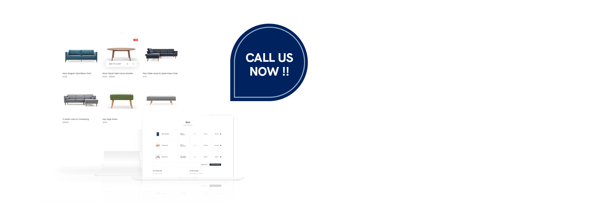 eCommerce Web Design & Development - Up to 98% Grant Available 4
