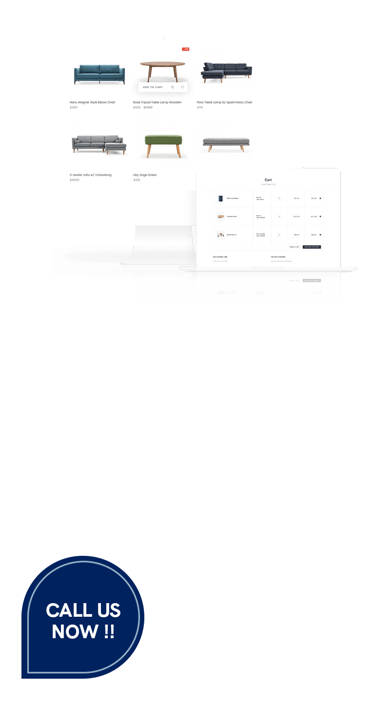 eCommerce Web Design & Development - Up to 98% Grant Available 5