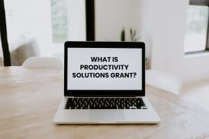 Productivity Solutions Grant (Website PSG grant)